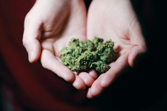 Different Weed Strains That You Need to Try in Your Lifetime